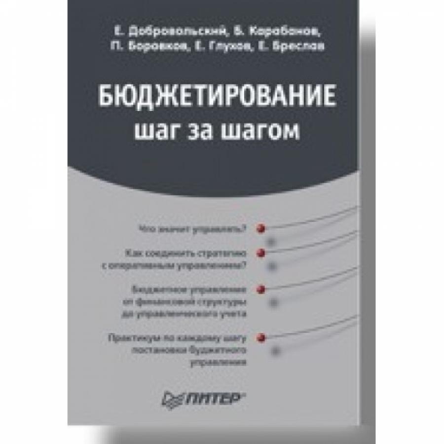 Обложка книги:  е.добровольский - бюджетирование шаг за шагом
