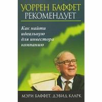 Мэри Баффет, Дэвид Кларк - Как найти идеальную для инвестора компанию
