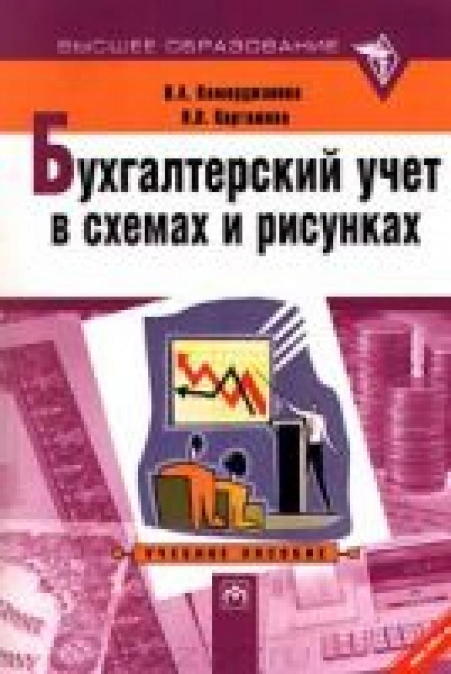 Обложка книги:  каморджанова н.а., карташова и.в. - бухгалтерский учет в схемах и рисунках