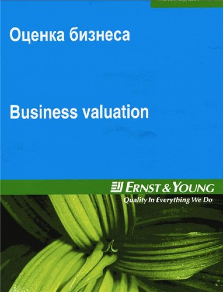 Обложка книги:  виктор шитулин - оценка бизнеса. тренинг оценки стоимости компаний от компании «эрнст энд янг»