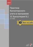 Заика А.А. - Практика бухгалтерского учета в программе 1С Бухгалтерия 8.1
