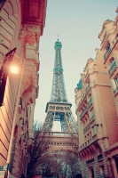 Франция и тресты